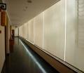 供应电动卷帘窗帘/阳光面料卷帘、遥控窗帘、办公室、会议室全遮光窗帘